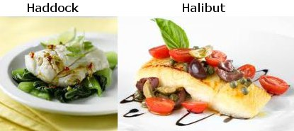 Heathy ways to cook and enjy Healthy recipes